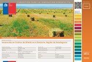 Innovación en Cultivo de Alfalfa en el Desierto, Región de ... - Fia