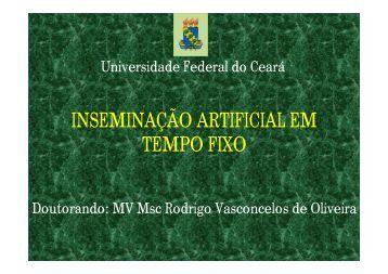 Aplicação - Universidade Federal do Ceará