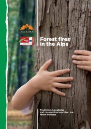 Forest fires in the Alps - Alpine Space Programme