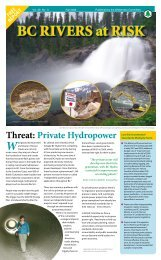BC Rivers at Risk.pdf - Wilderness Committee