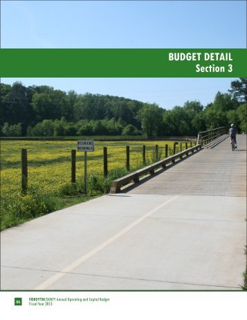 BUDGET DETAIL Section 3 - Forsyth County Government