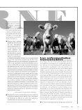 Comer carne - Nodo 50 - Page 6
