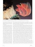 Sculpture - Janet Echelman - Page 6