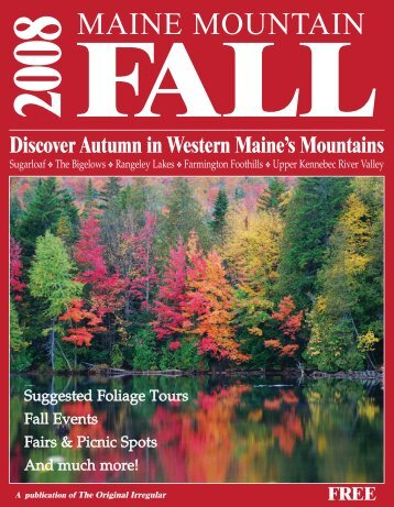 Fall Guide 2008 - The Irregular