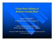 Visual Data Mining of Remote Sensing Data - Utah State University