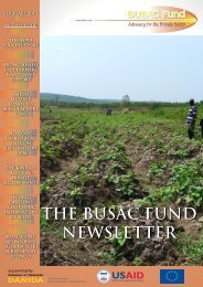 February 2013 Newsletter - BUSAC