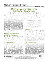 Microalgae as a Feedstock for Biofuel Production - Publications and ...