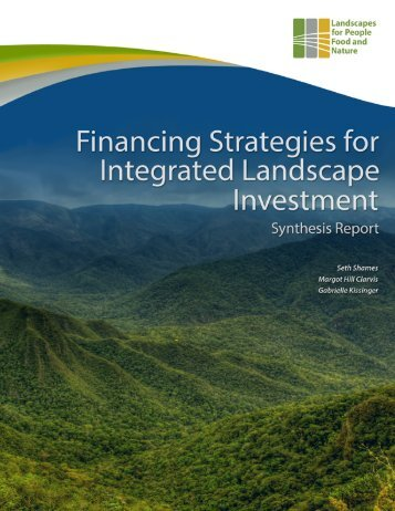 financing_strategies_for_integrated_landscape_investment