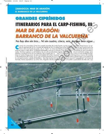 La pesca - Solopescaonline.es