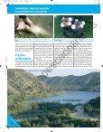 La pesca - Solopescaonline.es - Page 3
