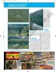 La pesca - Solopescaonline.es - Page 5