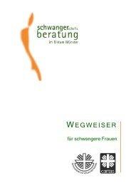 PC Version Wegweiser