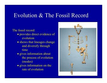 Evolution & the Fossil Record.pdf