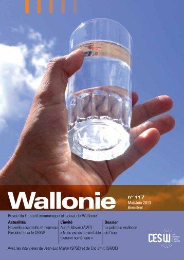 Wallonie 117 - Conseil économique et social de la région wallonne