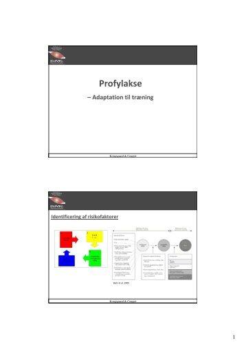 Profylakse – Adaptation til træning