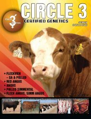 Catalogue - Bar 5 Stock Farms Ltd.