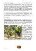 Syrah/Shiraz - Weinritter Steiermark - Seite 3