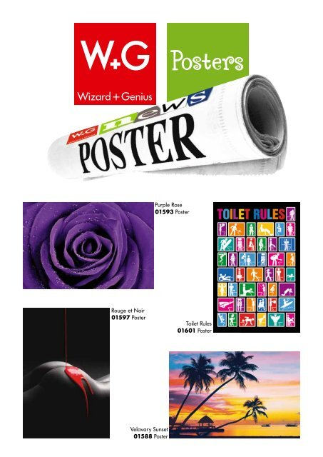 download Posters supplement PDF - Wizard & Genius