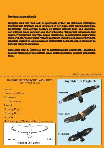 Flugbilder im Vergleich