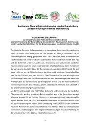 Gemeinsame Erklärung zur Verordnung des Rates der ...