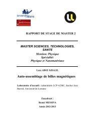 Auto-assemblage de billes magnétiques - Faculté des Sciences et ...