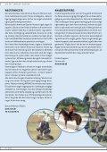 Hesten i Fokus 2012 - Page 6