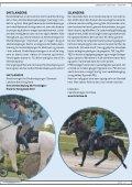 Hesten i Fokus 2012 - Page 7