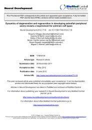 Provisional PDF - Neural Development