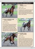 Tuborg Jydsk 4-Ã¥rings Grand Prix 2012 - Page 7