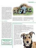 Hundekauf mit Herz und Verstand - Seite 6