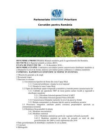 Raport Ştiinţific Etapa 3 Decembrie 2010 - CESEC