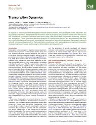 Transcription Dynamics.pdf