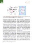 Transcription Dynamics.pdf - Page 2