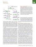 Transcription Dynamics.pdf - Page 3