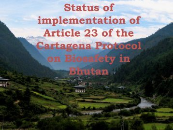 Status of implementation of Article 23 of the Cartagena Protocol on ...