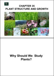 Why Should We Study Plants?