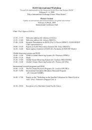 IGOS International Workshop