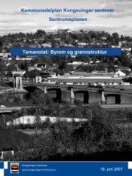 Temanotat Byrom og grønnstruktur - Kongsvinger Kommune