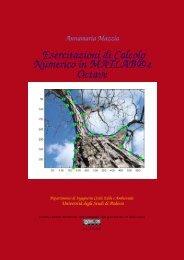 Esercitazioni di Calcolo Numerico in MATLAB® e Octave - Esercizi e ...
