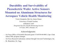 Durability and Survivability of Piezoelectric Wafer Active Sensors ...