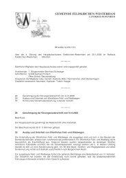 GEMEINDE FELDKIRCHEN-WESTERHAM - Pro Bürger