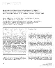 EXPERIMENTAL PARASITOLOGY, Vol. 89 Issue 02 - Centro de ...