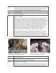 Big Sur (.pdf file) - Cal Poly Pomona - Page 6