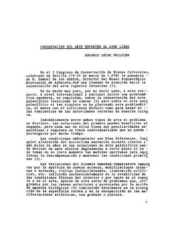 CONSERVACION DEL ARTE RUPESTRE AL AIRE LIBRE ...