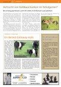 Ausgabe 11/2013 - Wir Ochtersumer - Seite 3