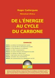 DE L'ÉNERGIE AU CYCLE DU CARBONE
