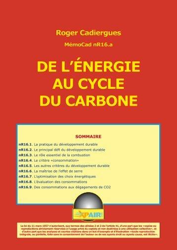 DE L'ÉNERGIE AU CYCLE DU CARBONE