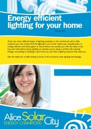 Energy efficient lighting for your home - Alice Solar City