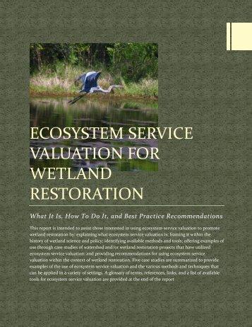 ecosystem_service_valuation_for_wetland_restoration