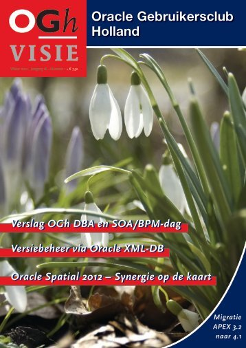 VISIE - Oracle Gebruikersclub Holland